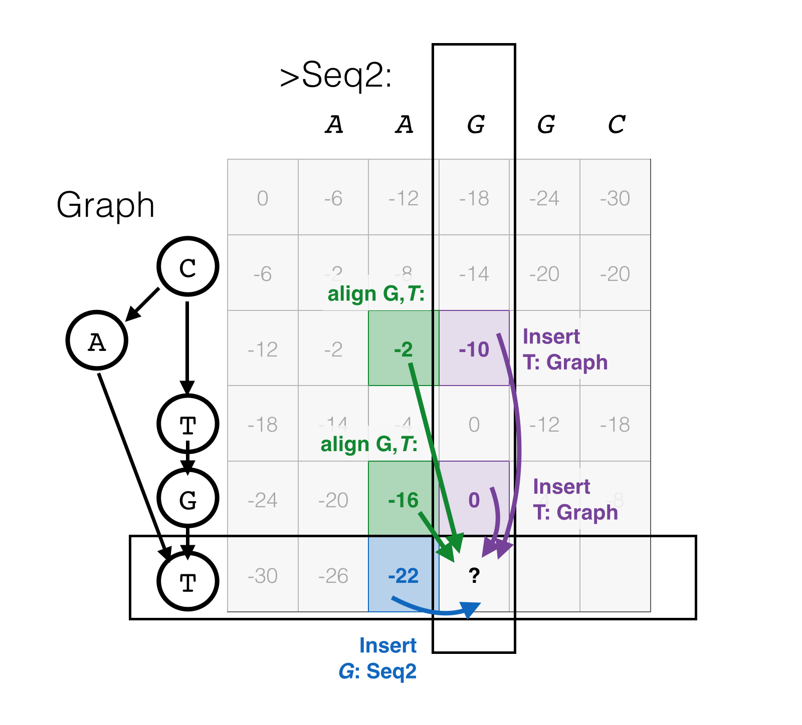 Dynamic programming for graph-string alignment